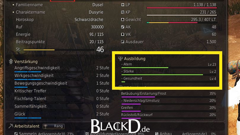 Inventar in Black Desert